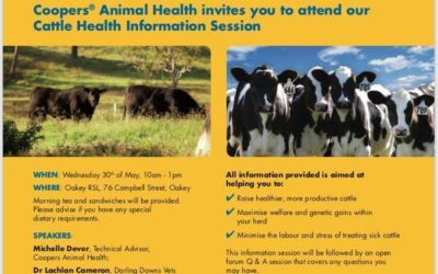 Cattle Health Information Session