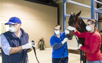 Join Darling Downs Vets and Ranlab for Open Day and Scope Offer 10th September